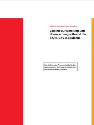 Leitlinie zur Kontrolle der SARS-CoV-2-Arbeitsschutzmaßnahmen in Betrieben